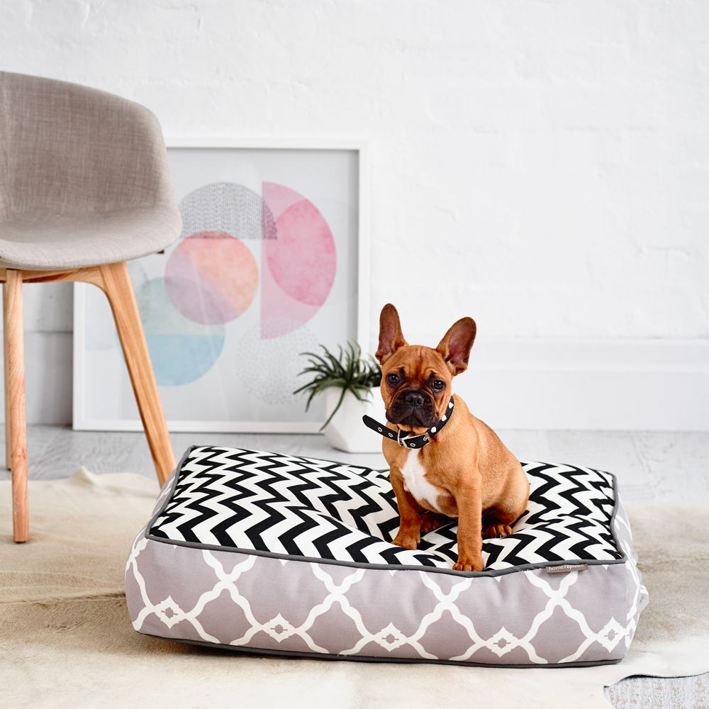Pet Superfine - A Cama de Cachorro da DoggHaus